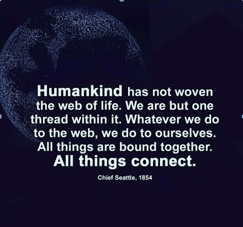 Connecting with the Grand Web of Life